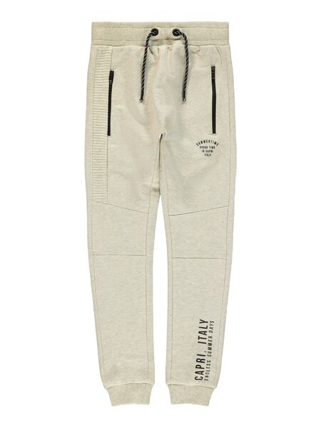 Haggo Sweat Pant, Peyote